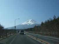 2008_02230001