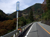 2008_11020004