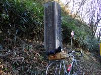2008_11020016