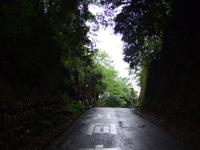 2009_0508_009