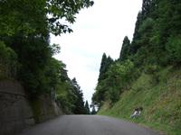 2009_0812_044