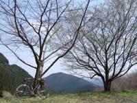 2010_0410_048
