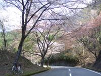 2010_0501_022