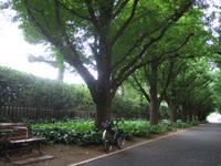2010_0627_007
