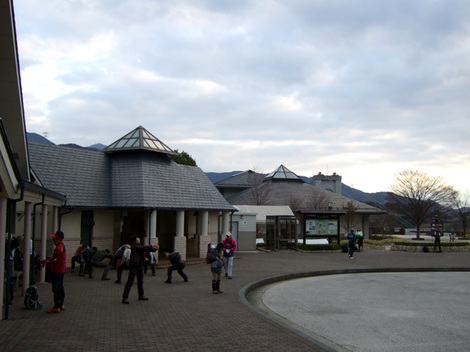 2010_1219_001