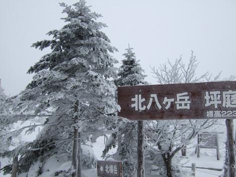 2011_0123_006